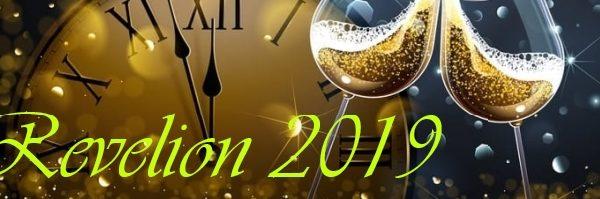 🎉 Revelion 2019 🎉